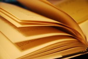 1209714_turning_pages